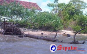 Abrasi Pantai, Warga Pulau Poteran Talango Resah