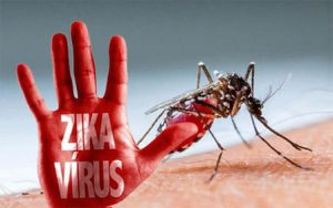 dinkes-sampang-himbau-masyarakat-waspada-virus-zika