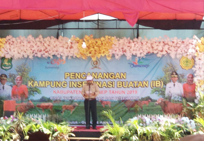http://seputarmadura.com/wp-content/uploads/2019/08/8-Desa-di-Sumenep-Dicanangkan-Sebagai-Kampung-IB.jpg