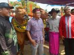 https://seputarmadura.com/wp-content/uploads/2019/09/Wabup-Sumenep-Kontes-Sape-Sonok-Bagian-Lestarikan-Warisan-Budaya.jpg