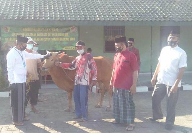 https://seputarmadura.com/wp-content/uploads/2020/07/Kodim-0827-Sumenep-Sembelih-2-Ekor-Sapi-di-Hari-Raya-Idul-Adha-2020.jpg